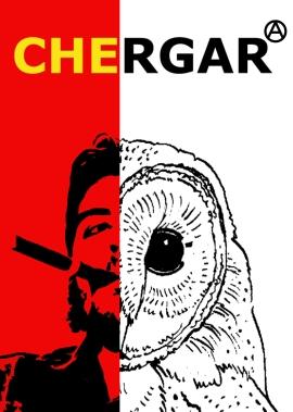 cheRGARIanarchy copy